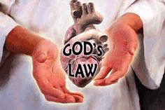 God's law in our heart